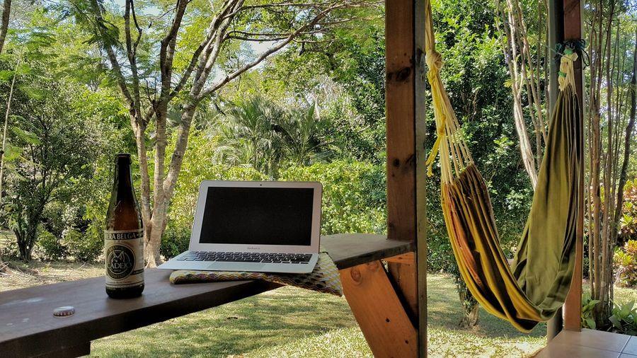 My Student Life Studying Learning Homework Pura Vida Costa Rica El Rodeo Cramming