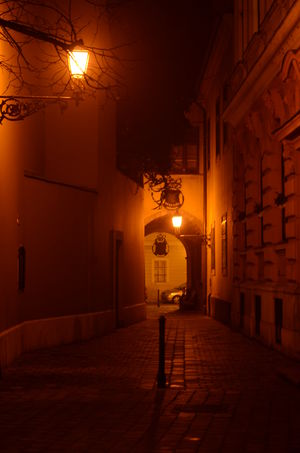 Budapest Castle Foggy Lights Narrow Street Night Orange Stone Road Street Light