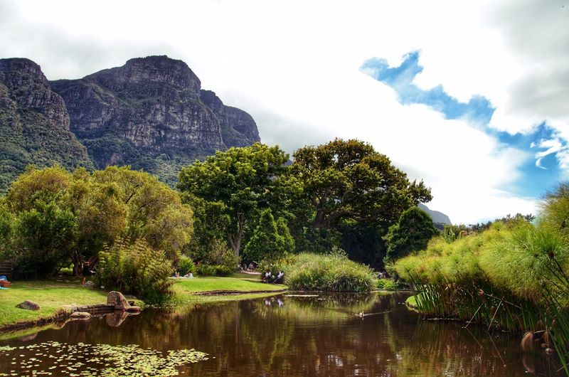 Kirstenbosch Botanical Gardens Travel Nature Tree Cloud - Sky Outdoors Water Mountain Beauty In Nature No People Landscape