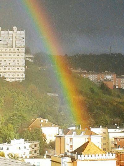 I've felt I could have touch it! City Cityscape Tree Architecture Building Exterior Built Structure Rainbow Double Rainbow Spectrum
