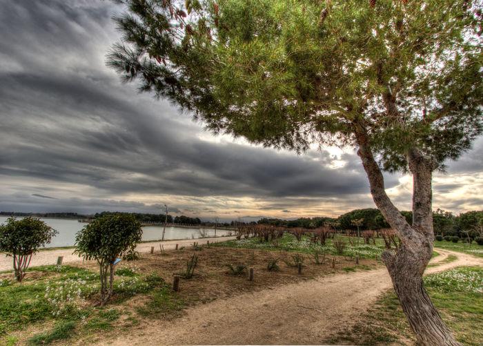 Dark Greenery Grey Sky Hdrphotography Lakeside Wal Sky Small Lane Trees