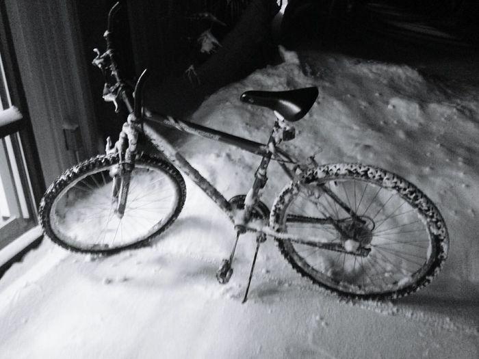 February Winter Snowing Snow Day Snowfall Snow ❄ Snow Snowy Snow❄⛄ Snow❄