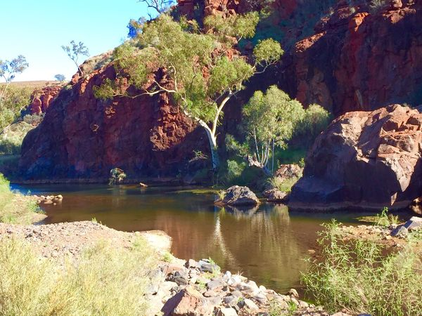 Red Rocks  GumTree Gum Trees Scenery Scenics Water Reflections Showcase April Water Landscape_photography Landscape_Collection Reedit Outbackaustralia Landscape Outback Pilbara Western Australia WesternAustralia Australian Landscape Australia Ghost Gum The KIOMI Collection