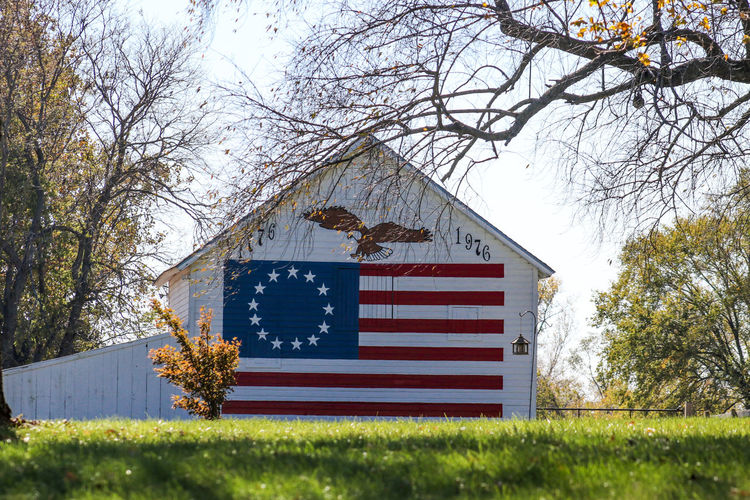 Us Flag. Stars And Stripes Architecture Bare Tree Branch Building Exterior Built Structure Day Flag Grass Growth Nature No People Outdoors Patriotism Sky Tree