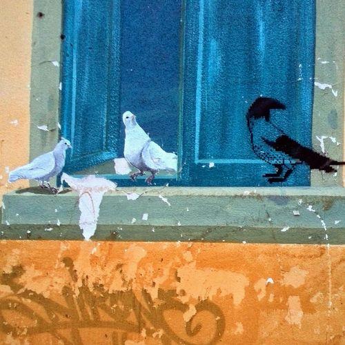 Birds Grafiti Art Wall Painting/grafitti Daily.graphy