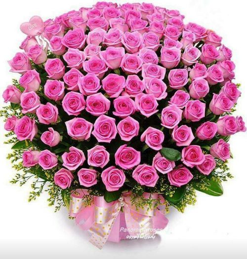 Hi! I Send Tis Roses To All My Eyeam Friends.
