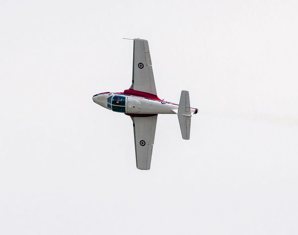 Snowbird Air Vehicle Airplane Clear Sky Copy Space Day Fighter Plane Flying Low Angle View Mid-air Military Mode Of Transportation Motion Nature No People Outdoors Plane Single Object Sky Transportation White Background
