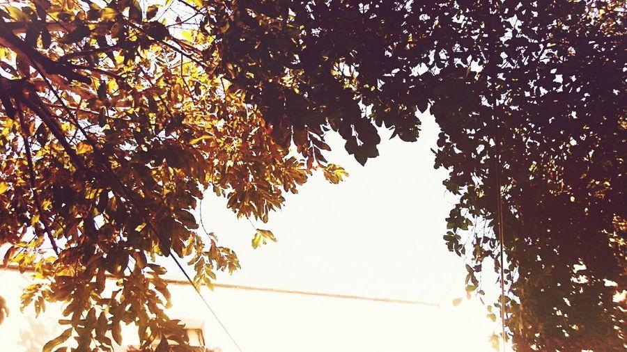 Hoje O Céu Abriu .. Beuatiful Photo Beautiful Day