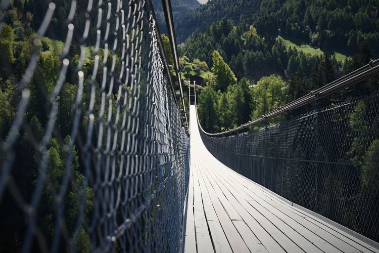 Hanging Bridge Switzerland EyEmNewHere Hanging Bridge Fiesch Bridge Railing The Way Forward Outdoors Footbridge Day Tree No People Growth Nature Beauty In Nature Let's Go. Together.
