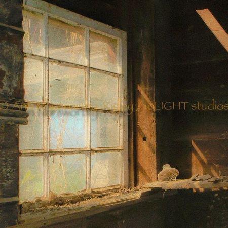 ©Ann Rigley Natural Light Barn IoLIGHTstudios  RuralTreasures  Window Light And Shadow