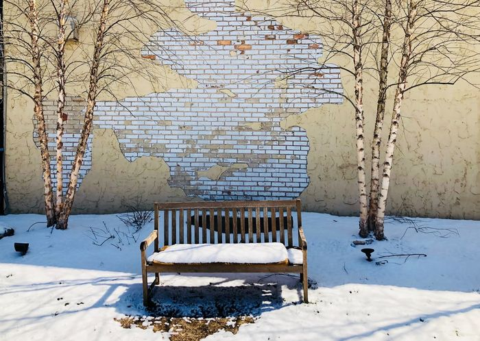 Snowy bench, birches & wall IPhone Photography Street Photography Snow No People Cold Temperature Day Winter Outdoors Architecture