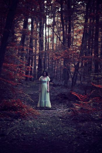 Conceptual Fine Art Photography Portrait Forest Autumn Tree Horror WoodLand Dress Spooky Halloween One Person Full Length Ghost Bizarre Elégance Leaf Standing Day Tree Trunk Adult Outdoors Nature The Portraitist - 2017 EyeEm Awards EyeEmNewHere
