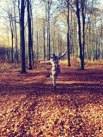 Its Me Beautiful Nature Beautifulforests