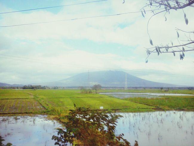 Mount mayon.. Mayonvolcano Albay,bicol Philippines