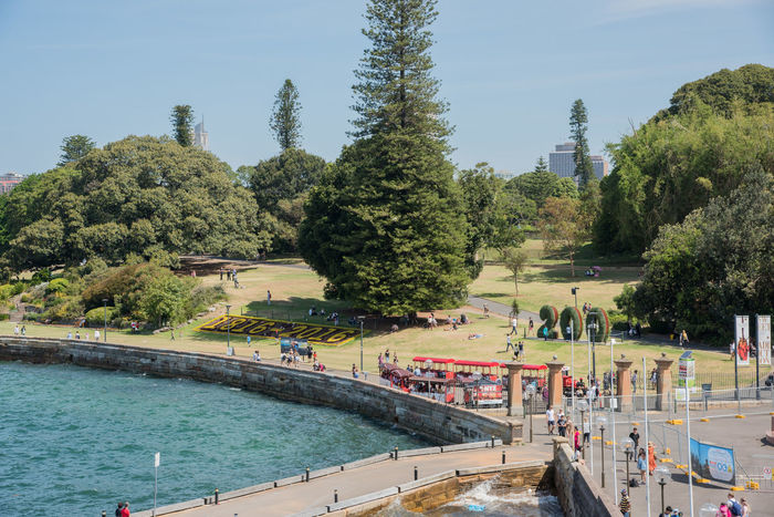 Sydney,NSW,Australia-November 20,2016: Royal Botanic Gardens with tourists and touring train during 200 year anniversary in Sydney, Australia 200 Years Old Australia Celebration Exploring Royal Botanic Gardens Touring Tourist Tourist Attraction  Tram Transportation Travel Tree Anniversary Flowers Greenery Leisure Activity Number People Real People Sydney Tourism Train Water Waterfront Weekend Activities
