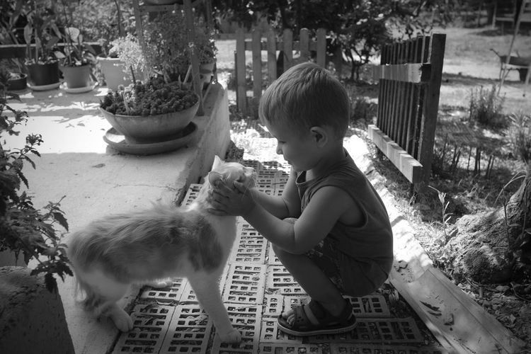 Side View Of Boy Petting Cat While Crouching In Yard