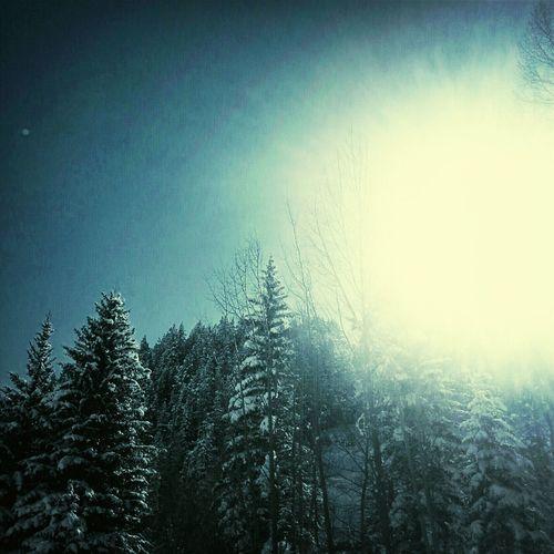 Utah. Nature Monochrome Monochrome_Monday