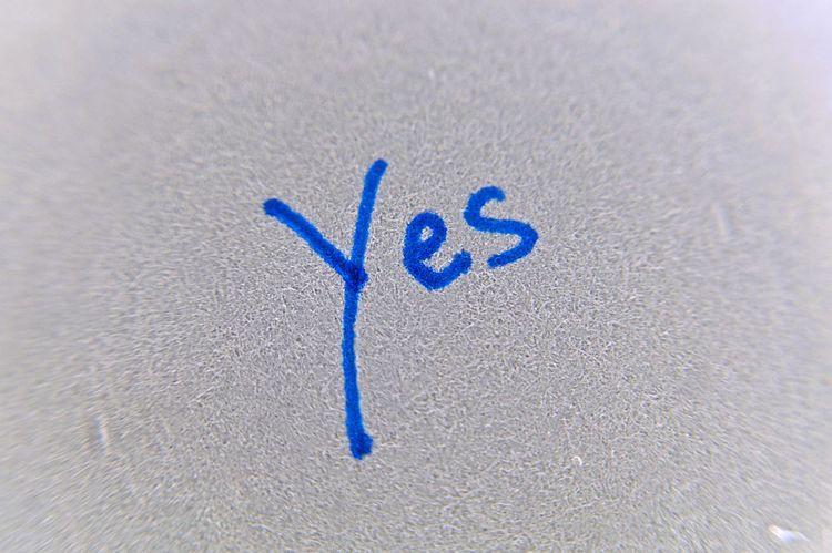yes Blue Close-up Day Handwriting  High Angle View No People Number Outdoors Typo Typography Writing Written Yellow