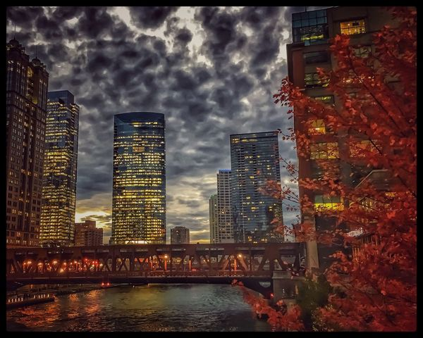 Skyscraper Architecture Building Exterior City Built Structure Cityscape Sky Illuminated Chicago Chicago Loop Downtown Chicago Elevated Track Elevated Train Tower Cloud - Sky Modern Travel Destinations Urban Skyline River Outdoors Night Downtown District No People Low Angle View Tall View of Chicago River with autumn colors and evening illuminated lights reflected on the water.