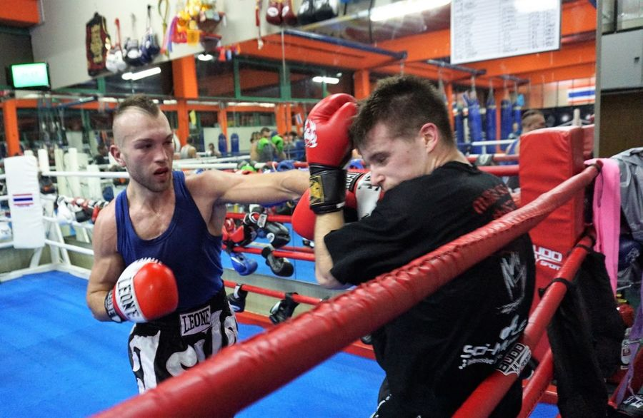 sparring session with Samo Petje Boxing Zagreb Zagreb, Croatia Athlete Boxing - Sport Boxing Glove Boxing Ring Competition Competitive Sport Conflict Punch Punching Samo Petje Sparring Session Sportsman Standing Two People Young Men
