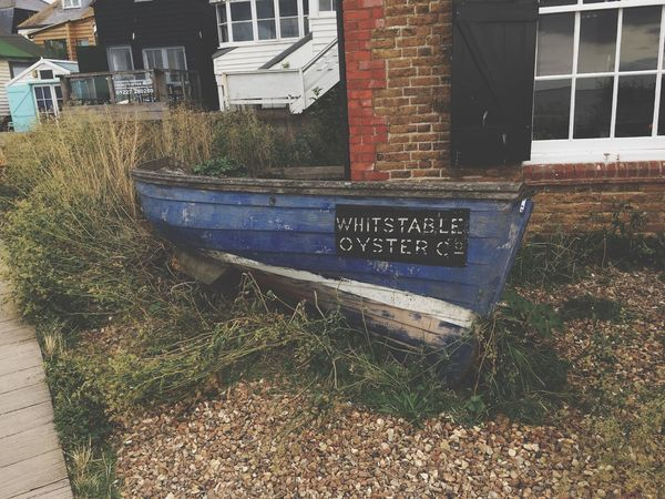 Whitstable Boat Oyster  Whitstable Building Exterior Built Structure Architecture Communication Day City Nature Sign Outdoors Western Script Residential District No People Mode Of Transportation Plant Transportation Building Sunlight Text Street Water