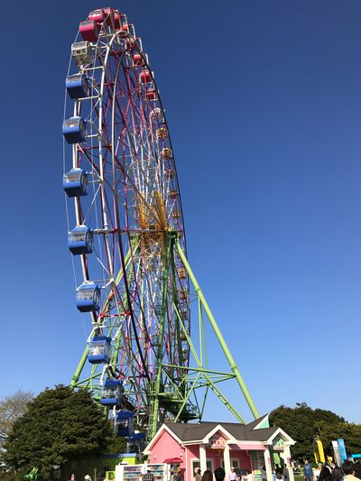 HitachiSeaSidePark Amusement Park Arts Culture And Entertainment Amusement Park Ride Ferris Wheel Low Angle View Clear Sky Built Structure Blue Outdoors Day No People Leisure Activity Big Wheel Sky Architecture Tree