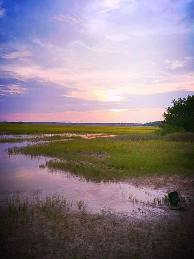 Marshland  Marshes Wetlands Still Life Skidaway Island Golden Hour my little piece of heaven my get away .