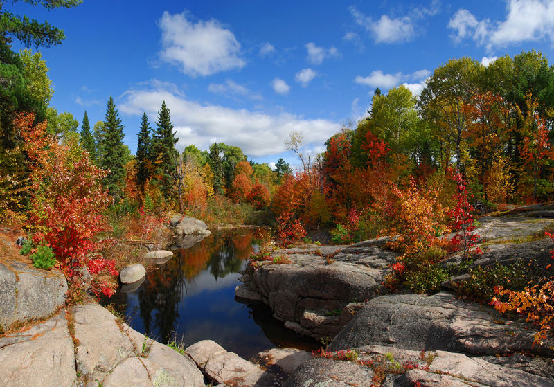 Autumn Beauty In Nature Change Cloud - Sky Forest Idyllic Landscape Leaf Nature New Brunswick, Canada No People Outdoors Rock - Object Scenics Tranquil Scene Tranquility Tree Water