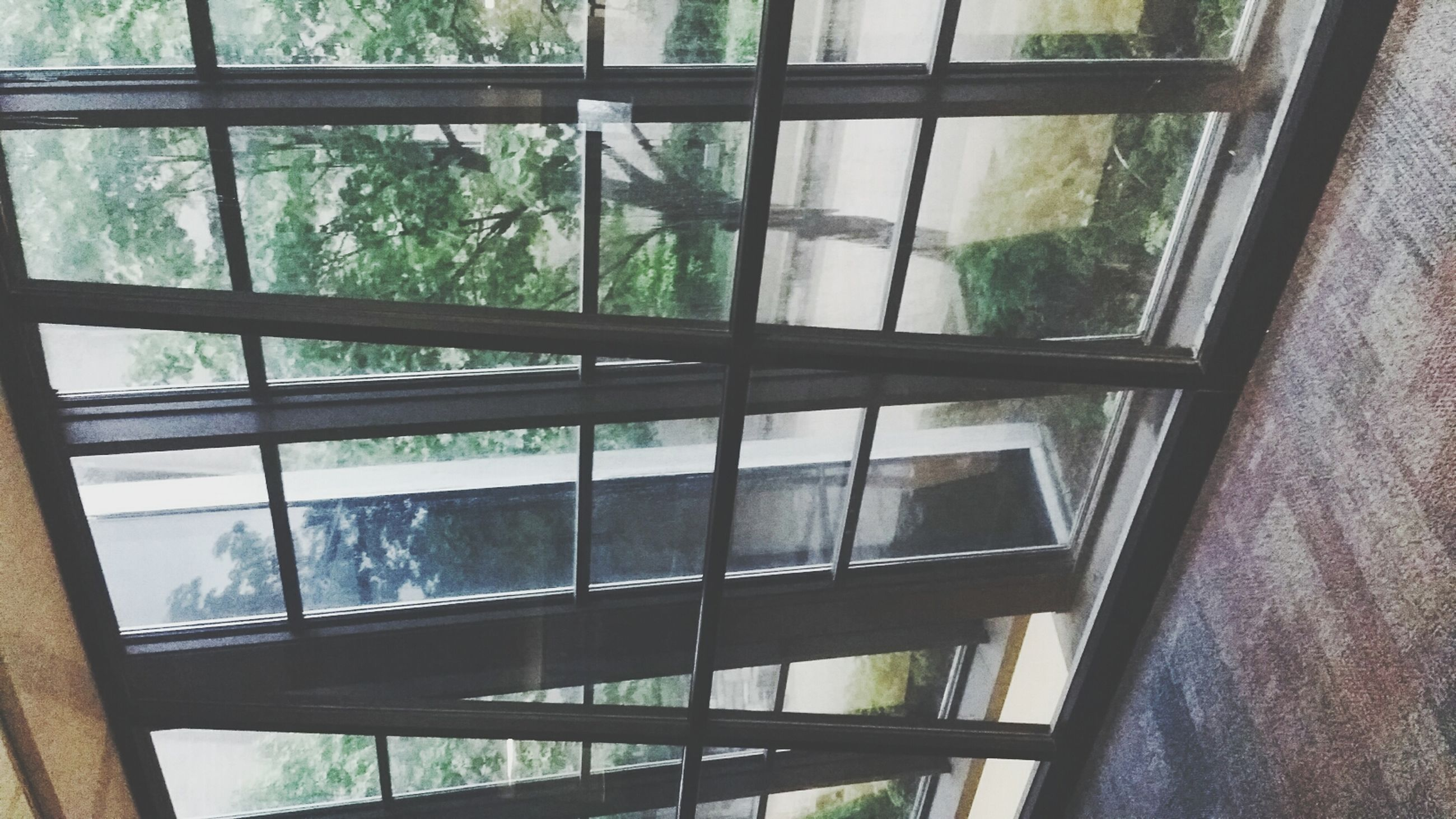 window, glass - material, indoors, transparent, built structure, architecture, glass, tree, reflection, day, house, window frame, looking through window, building exterior, curtain, no people, sunlight, pattern, full frame, open