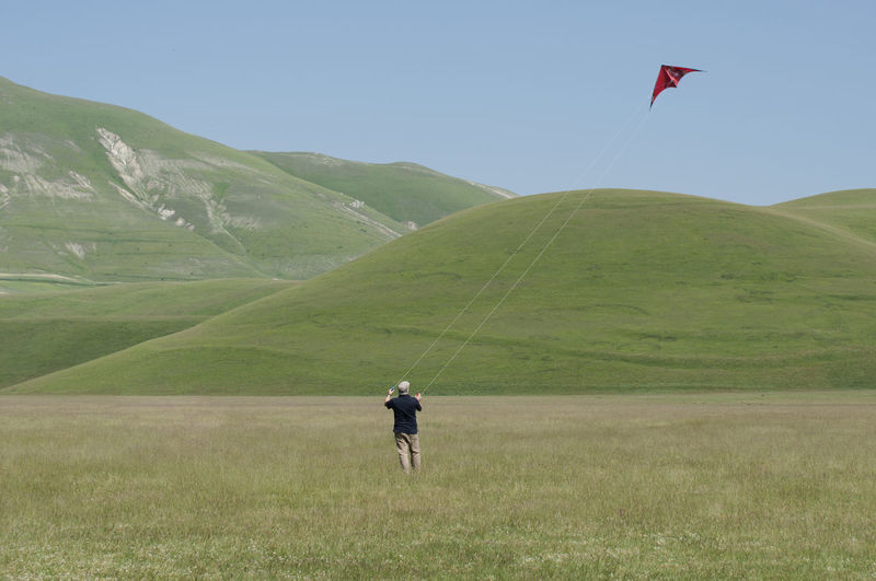 Rear view of man flying kite on grassy field against clear sky