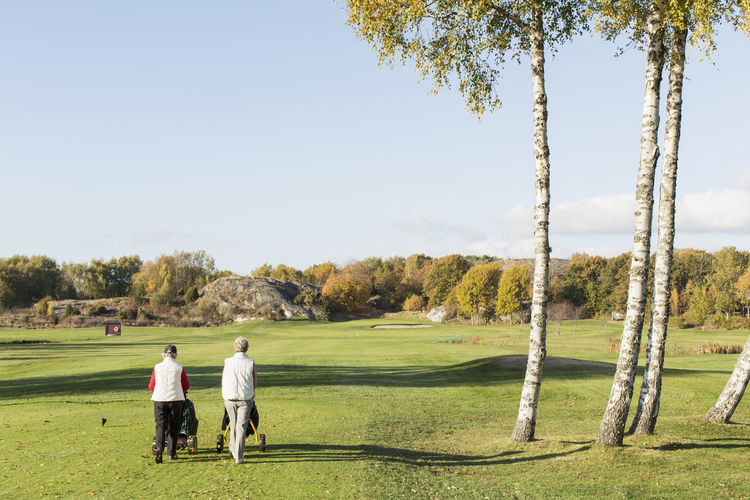 Rear view of men on golf course against clear sky