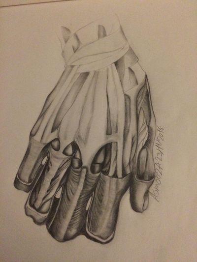 Anatomy Shading  Pencil Drawing Pencilart Art, Drawing, Creativity
