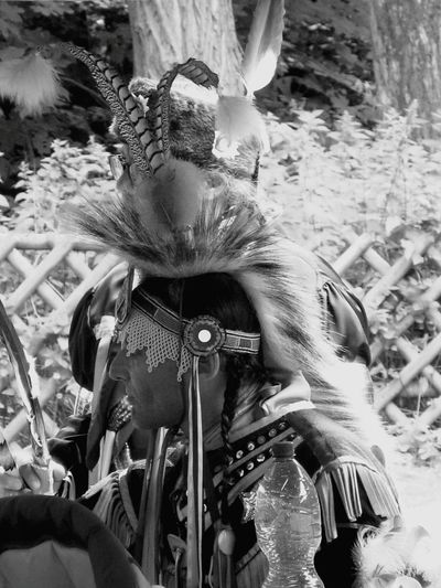 The Human Condition Native American Indian Pow Wow Young Warrior Black And White