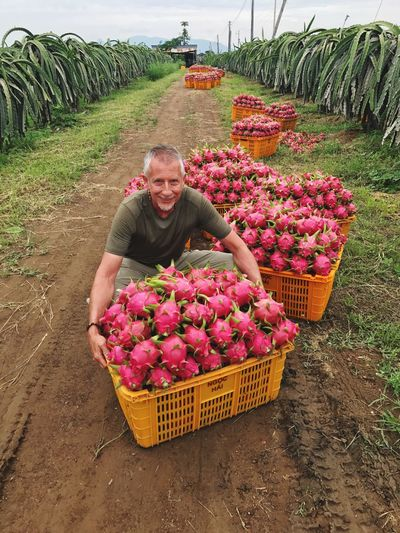 Dragon fruit Agriculture Mature Adult Smiling Adults Only Farm One Person One Man Only Adult Growth Flower Freshness Only Men Abundance One Mature Man Only Working Large Group Of Objects Crop  Looking At Camera Small Business Farmer