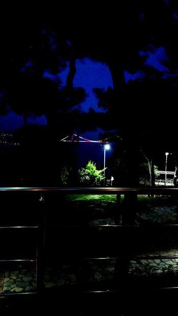 Istanbul Tarabya Tarabyaüstü Gece Night Illuminated Outdoors No People Turkeyphotos Bridge Kopru 3.köprü Sariyer Sarıyer Light Arts Culture And Entertainment Galaxy Tree Sky Moon