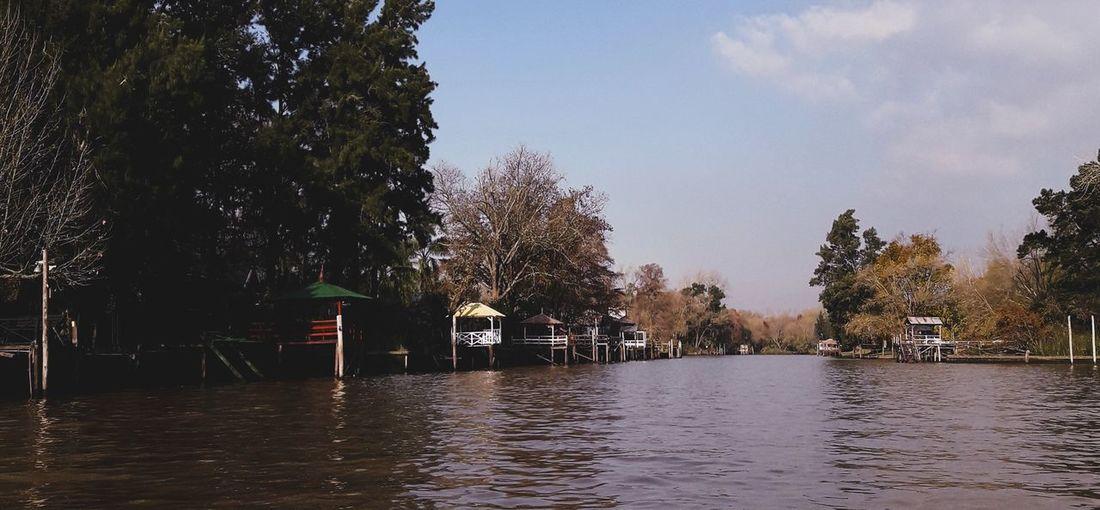 River Rio Carapachay Lancha Go To Work Tree Water Ice Hockey Hockey Sky