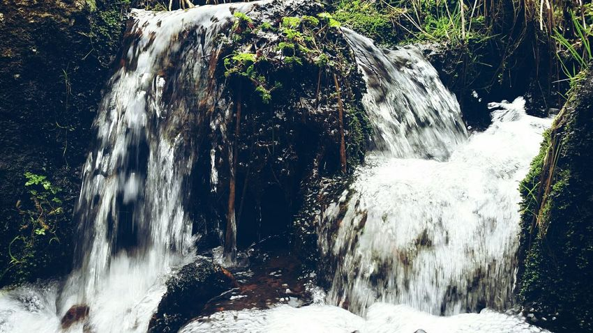 Water Waterfall Bourn Czech Nature In The Forest Pure Water