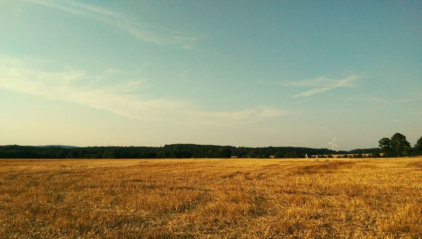 Eine traumhafte Landschaft... Hello World