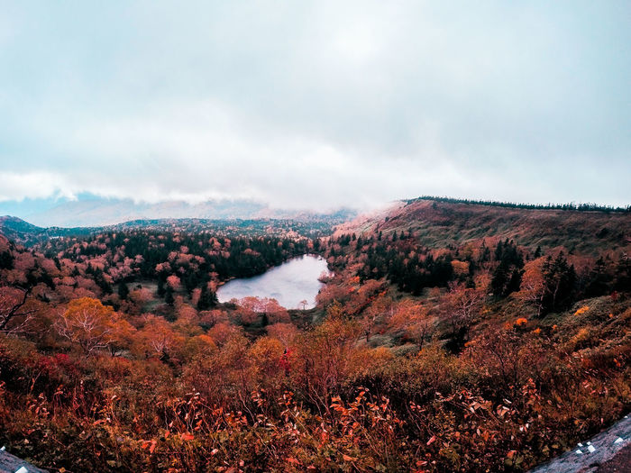 autumn is my favorite season photography Autumn Autumn leaves Autumn colo Gopro Goprohero4 Photography Autumn Autumn Leaves Japan Photography Nature Nature Photography Naturelovers Japan Japan Photography Japan Scenery Landscape Nature Cloud - Sky No People Beauty In Nature Outdoors Agriculture Scenics Sky Day Tree