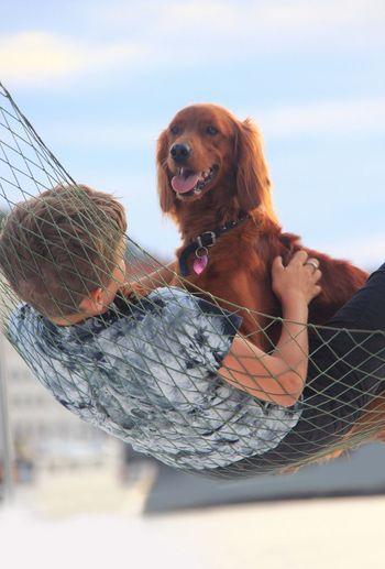 Boy With Dog In Hammock