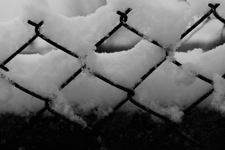 Fence Black And