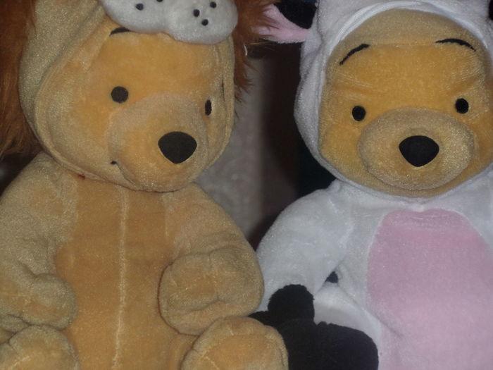 Winnie The Pooh  Tedddy Bear