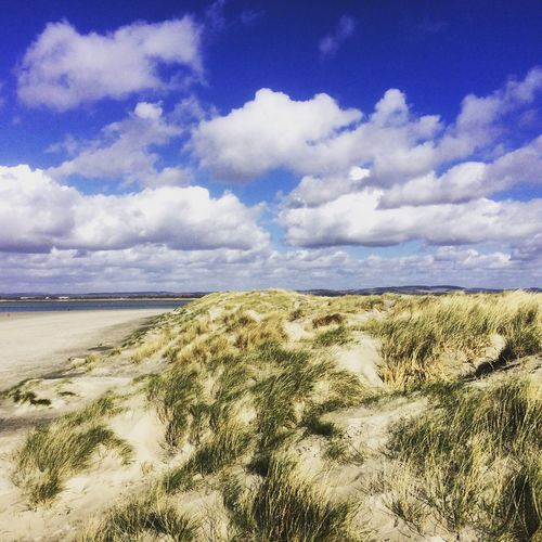 East Head spit in West Sussex Spit Beach Beach Photography Beach Life Beaches East Head West Wittering West Sussex England🇬🇧 Sand Dune Sand Dunes Sand
