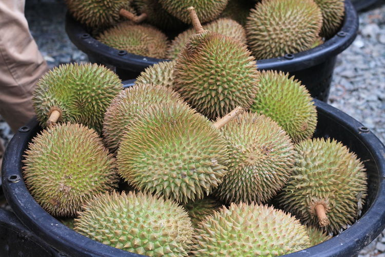Durian in containers at market for sale