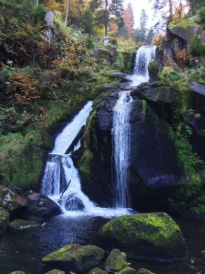 Nature Water Waterfall Schwarzwald