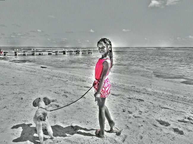 Hanging Out People Beach Pets Dog Colorsplash