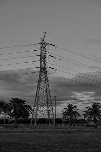 Blackandwhite Black And White Sky Sky And Clouds Electricity  Electricity Pylon Connection Electricity Tower No People Low Angle View Cloud - Sky Outdoors Landscape Tree Palm Tree Power Line  Cable Power Supply Shadows & Lights Clouds And Sky Afternoon