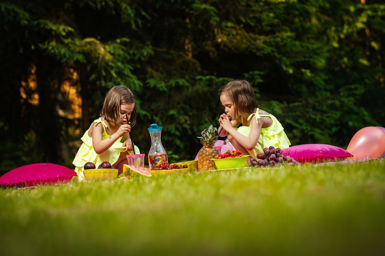 Picnic Girl Child Childhood Kid Forest Summer Sister Sisters Twins Girls Women Grass Females Togetherness Food And Drink Family Food Leisure Activity Sibling Friendship Sitting Offspring Nature Enjoyment Day Happiness Outdoors