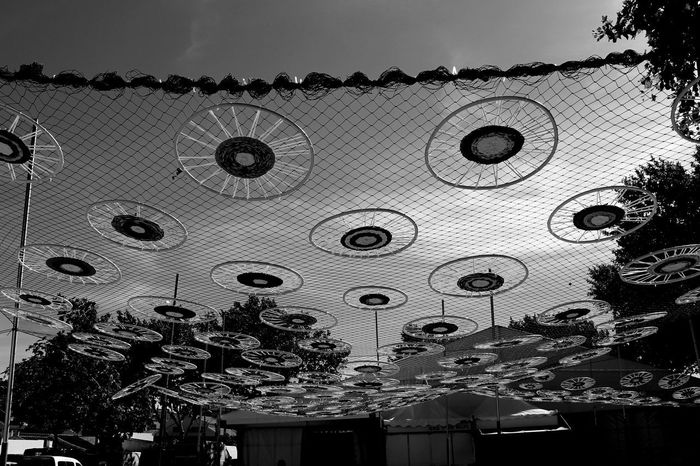 Art And Craft Black & White Circle Creativity EyeEm Best Shots - Black + White From My Point Of View Growth Hanging Low Angle View Perspective Tree Trees Art Black And White Circles Close-up Day Detail Knitted  Net No People Outdoors Round Sky Street Photography The Week On EyeEm