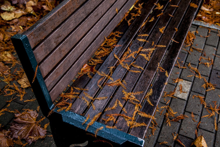 High Angle View Of Fallen Leaves On Bench In Park During Autumn